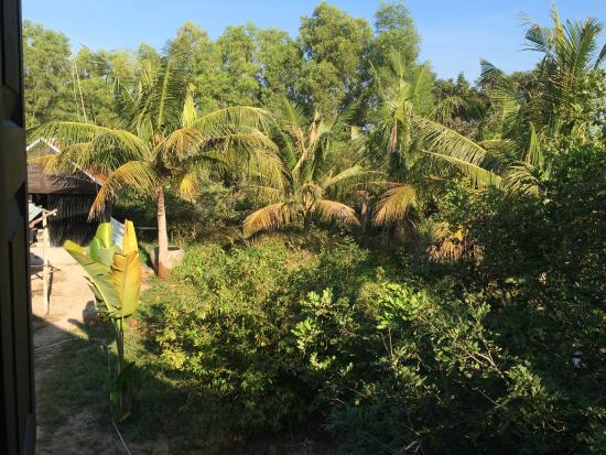 Channa's Angkor Homestay : View from our room
