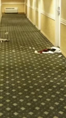 Doubletree Hotel Chicago / Alsip: hallway