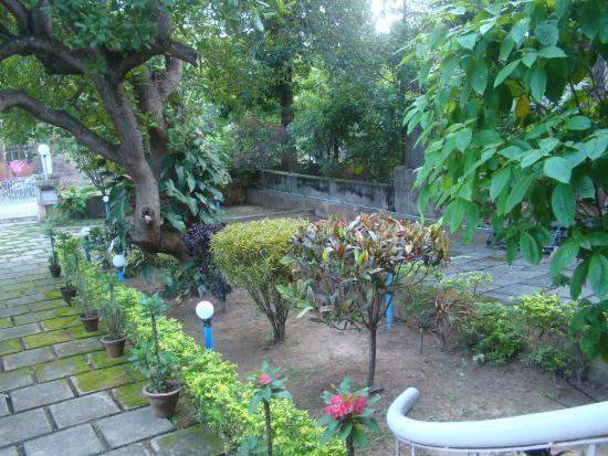 Deer Park Eco Home: view from verandah