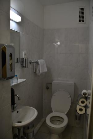 Munchener Hof Hotel: 洗面・トイレとシャワーが独立しています