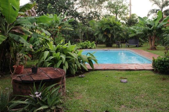 Los Tangueros: Zwembad in tuin