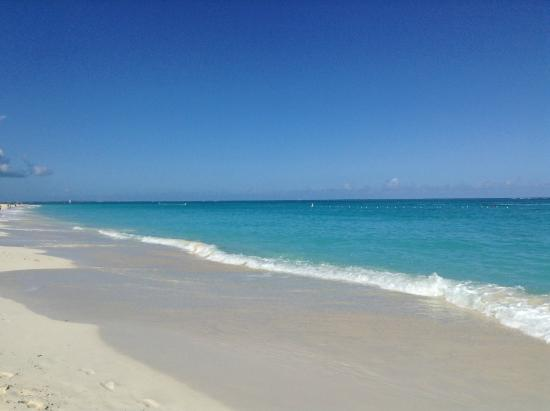 One On Marlin : yes, the beaches REALLY DO LOOK LIKE THIS!!!