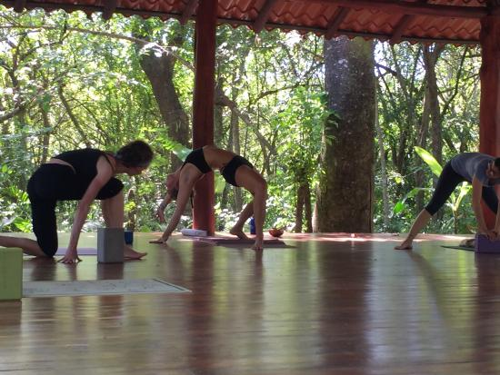 Shaka Beach Retreat: Second-to-none yoga instruction (for all levels!)