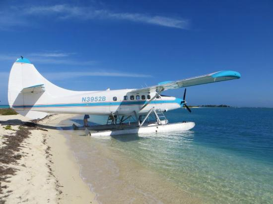 Key West Seaplane Adventures: beached at Fort Jeffferson