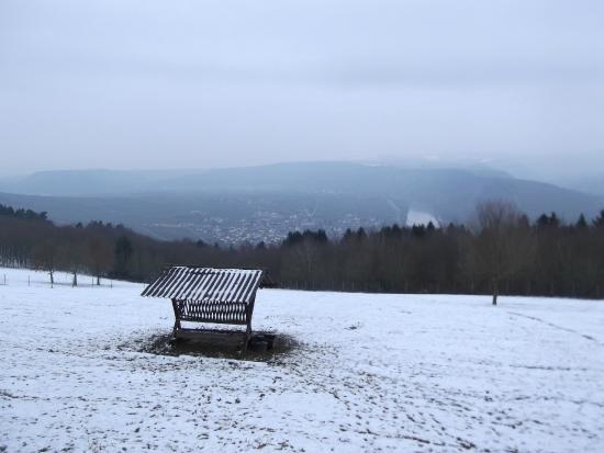 Landal Sonnenberg: Uitzichtspunt rand van het park