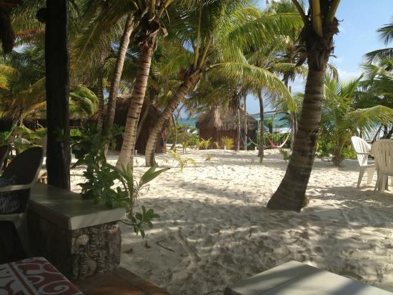 Cabanas Los Arrecifes: view from the restaurant