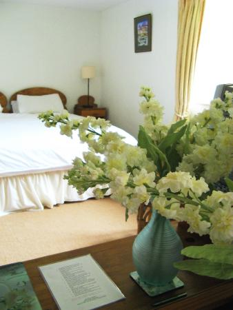 Norton Sub Hamdon, UK: Bedroom