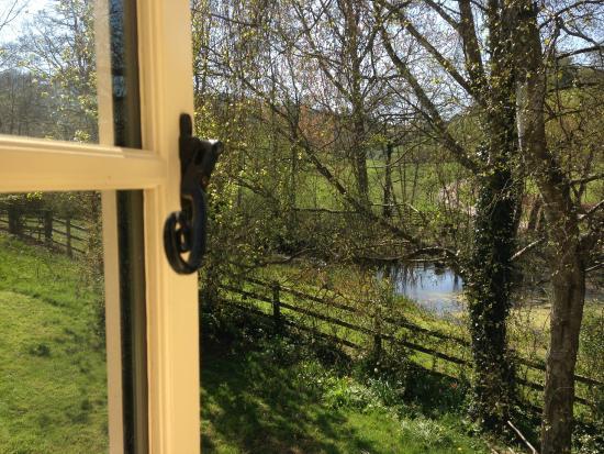 Norton Sub Hamdon, UK: Bagnell Cottage - garden view