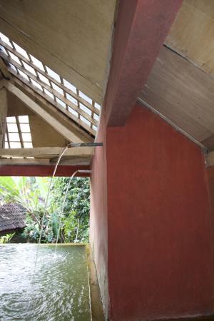 Grya Sari - the Bali Hot Springs Hotel: Hot Springs Bath
