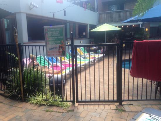 Aquarius Backpackers Motel : pool/lizard