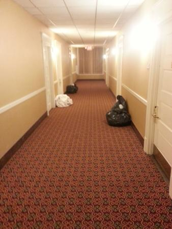 Residence Inn Cleveland Downtown: Trashbags in hallway