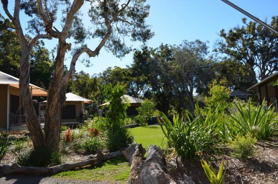 Castaways Moreton Island: Set amongst the melaleuca trees on Moreton Island