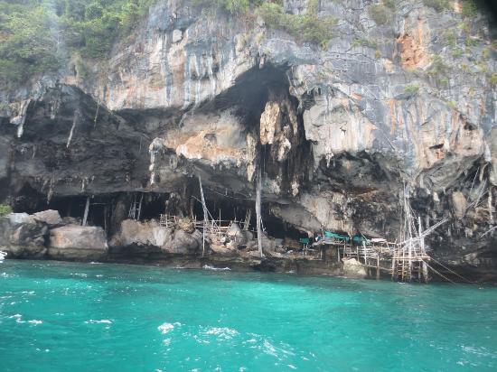 Phuket Pro Dive & Sail Co.: Swimming