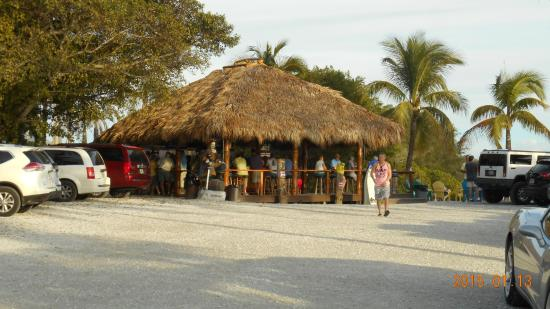 Tiki bar across parking lot picture of casey key fish for Casey key fish house