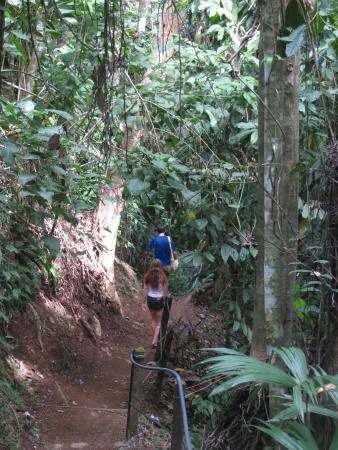 Uvita Waterfall: short walk to the waterfall