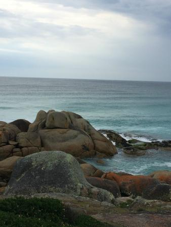 Bay of Fires Lodge: View