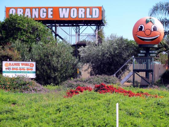 ‪Orange World‬
