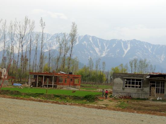 postcard from kashmir