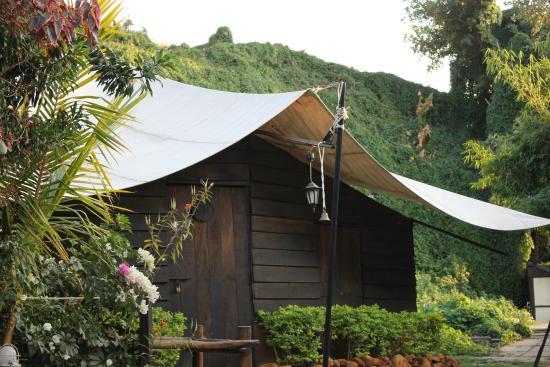 Ravine Hotel Ravine tents & Ravine tents - Picture of Ravine Hotel Panchgani - TripAdvisor