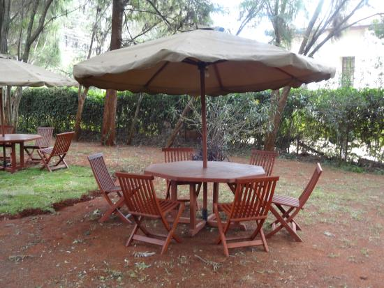 Milimani Backpackers & Safari Centre : Out Door Recreational Area