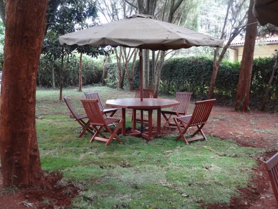 Milimani Backpackers & Safari Centre : Out Door Recreational Area.