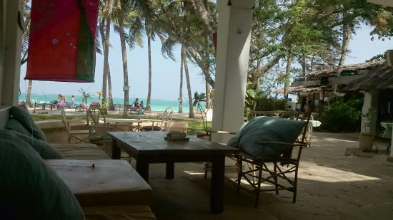 Madafoo's Beach Bar & Bistro : The View
