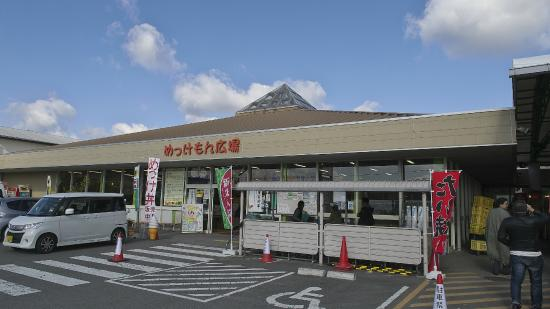 Kinokawa Restaurants