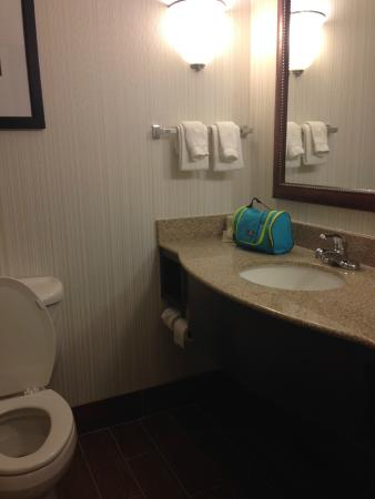 Holiday Inn St. Paul-I94-East (3M Area): Bathroom