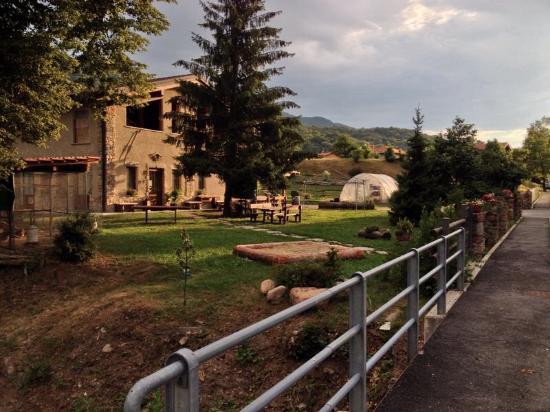 Azienda Agricola Piccinelli Massimo : Azienda agricola piccinelli
