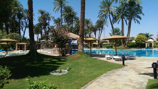 Mercure Luxor Karnak : Lovely pool area