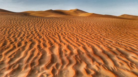 Liwa Hotel : Liwa dunes