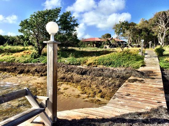 HOTEL CAP MACABOU: Vue du ponton, de la plage sur l'hotel