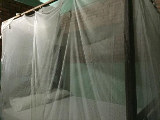 Dewi Homestay : Mosquito net