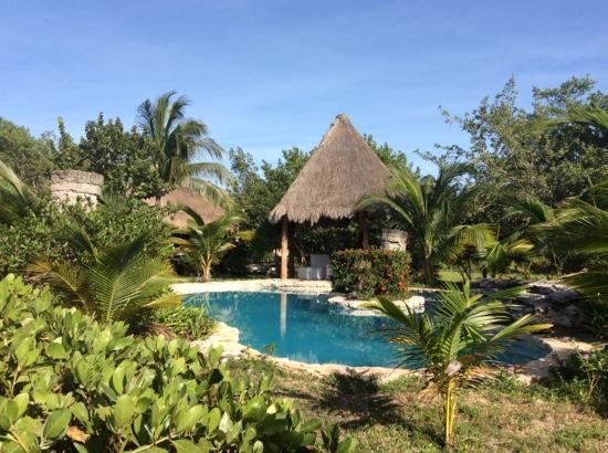 Alberca picture of hotel villas delfines holbox island for Villas hm paraiso del mar holbox tripadvisor