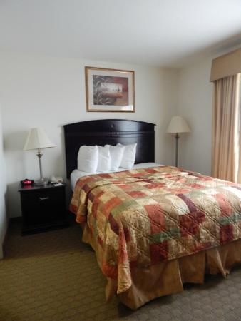 MainStay Suites Texas Medical Center/Reliant Park: Queen size bed