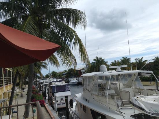 Key West Inn - Key Largo: View
