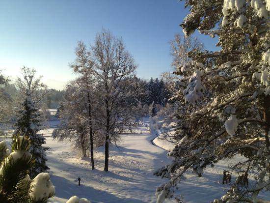 Sonnenalp Resort : Zimmeraussicht am 26.12.14
