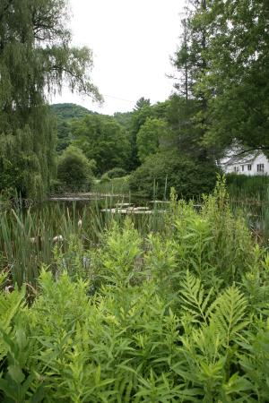 Shaker Meadows Bed and Breakfast: The pond at Shaker Meadows looking at the Creamery Building and the mountain ridge