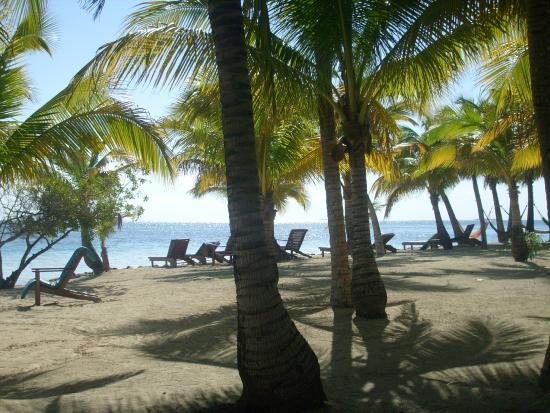 Pelican Beach - South Water Caye: la plage