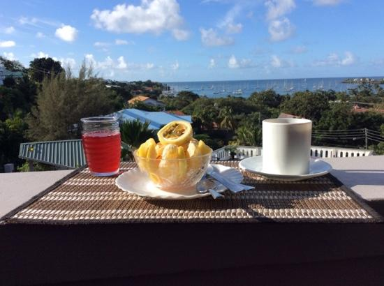 Casabella Bed & Breakfast: the view to go along with an already amazing breakfast