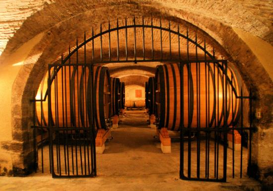 Wine in Provence Tours: Cave visit