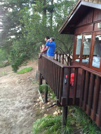 Phantom River View Cabins : The balcony of the King's Gift cabin