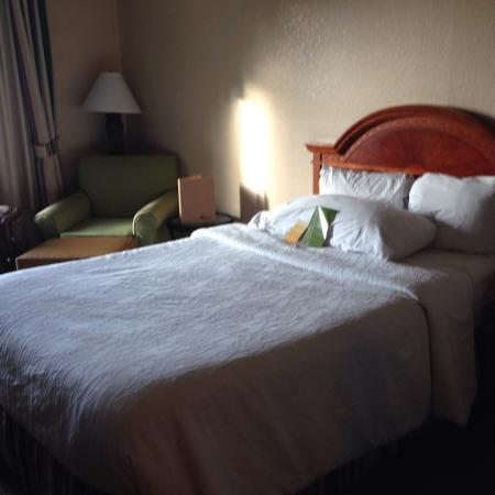 Hilton Garden Inn Tampa North: Cama full é muito macia