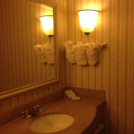 Hilton Garden Inn Tampa North : Banheiro bem claro