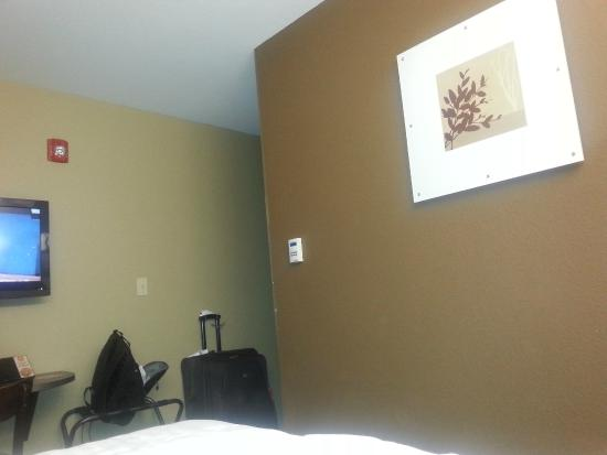 Microtel Inn & Suites by Wyndham Pearl River/Slidell: room pic