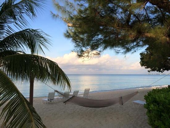 Plantana Condominiums: Sunrise on the beach