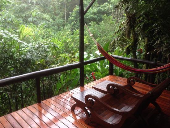 Nayara Hotel, Spa & Gardens: la terraza de nuestra habitación... 🐸