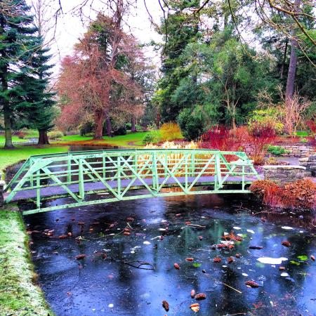 National Botanic Gardens: Bridge At The Pond