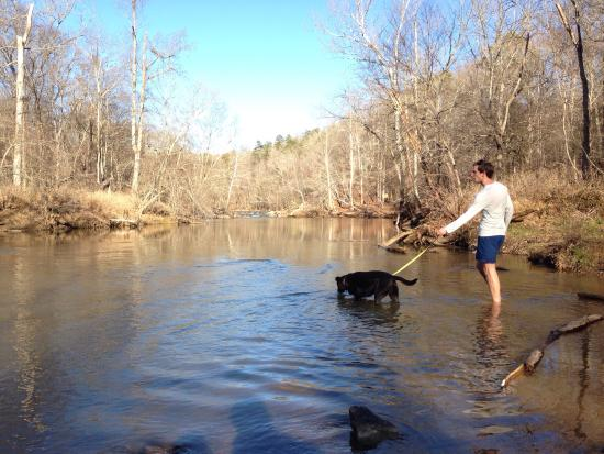 Eno River State Park : Walk in the water