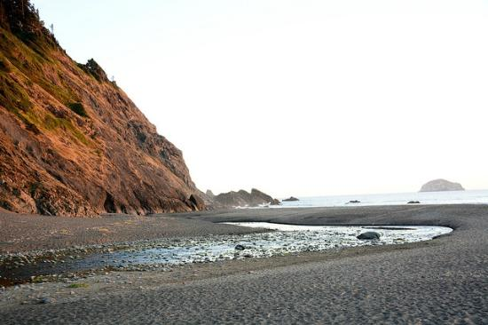 Humbug Mountain State Park: Beach at Humbug campground